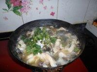 清炖草鱼头的做法_【清炖草鱼怎么做好吃】清炖草鱼的做法,配方,步骤图解-食谱秀