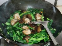 (鸭心)步骤香菇小苔菜的蚝油做法-菜谱大全-食图文好不好图片