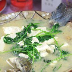 鲫鱼芫荽豆腐汤