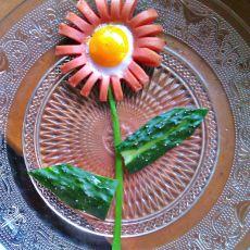 火腿太阳花