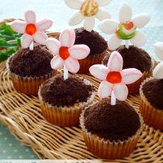 花朵盆栽杯子蛋糕