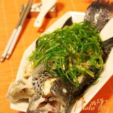 清蒸珍珠龙胆石斑鱼的做法