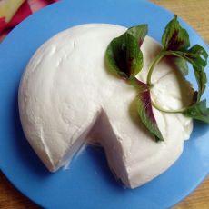 自制放心奶酪