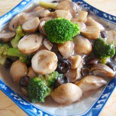 草菇西兰花烩海参