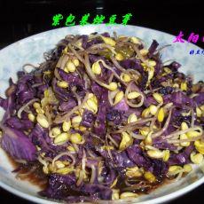 紫包菜炒豆芽