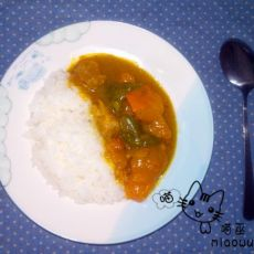 南瓜鸡腿咖喱饭的做法