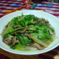 秀珍菇炒生菜