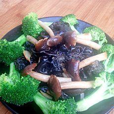 素炒茶树菇