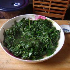 清炒枸杞菜的做法