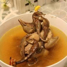 海马鸽子汤的做法